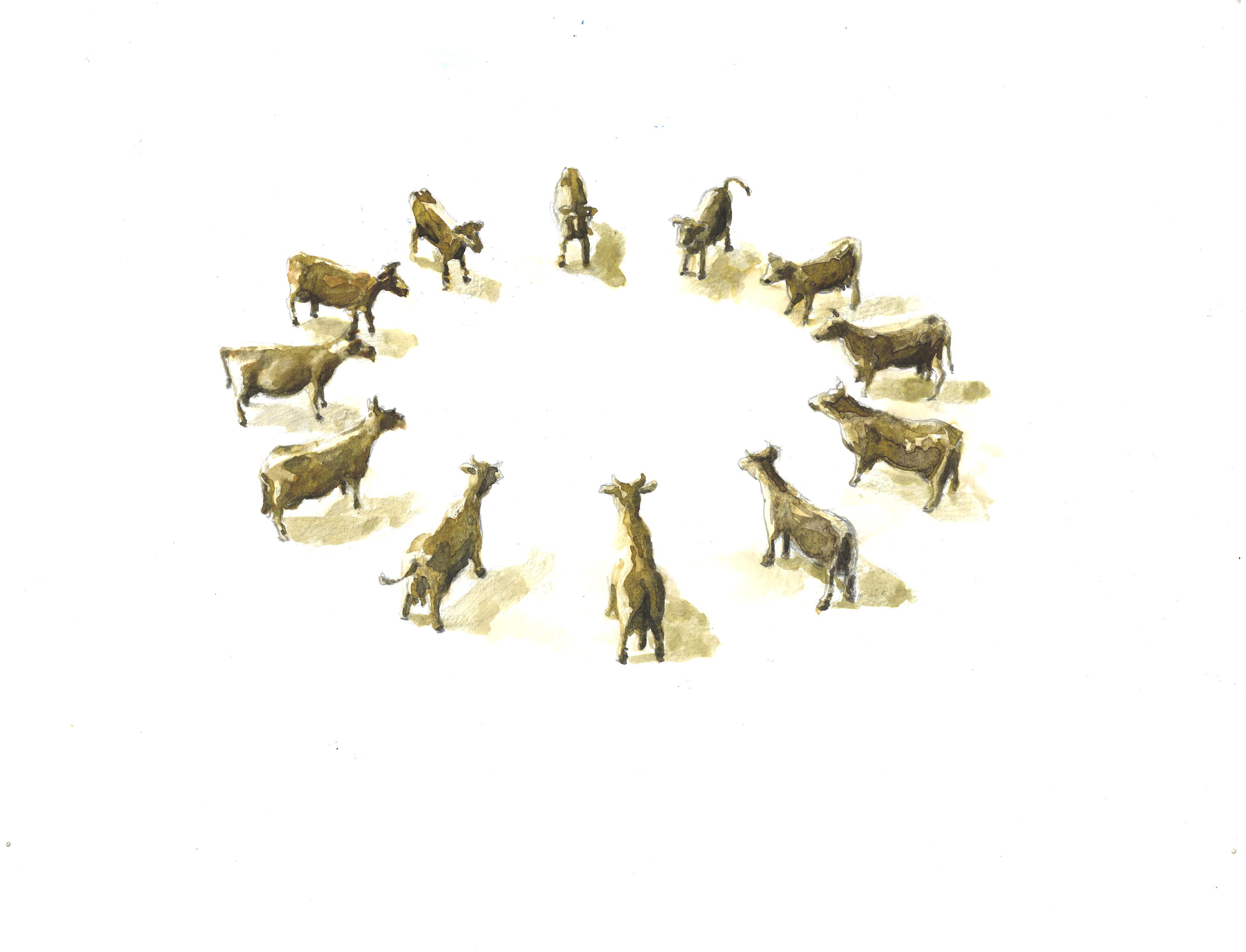 cow-circle-3